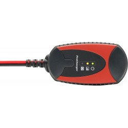 Ładowarka akumulatorowa PROCHARGER 600